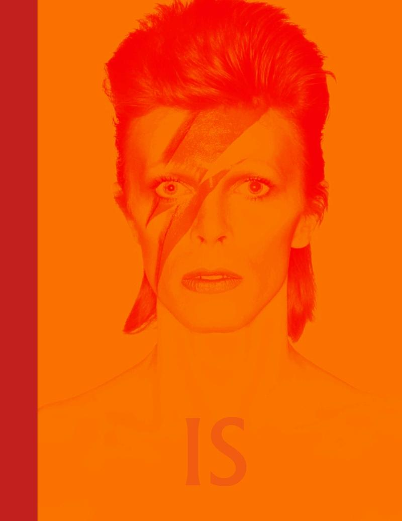 David Bowie is inside