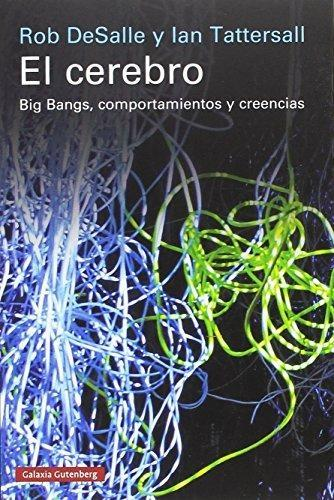 El cerebro. Big Bangs, comportamientos y creencias
